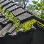 Why Roof Maintenance is Important